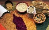 """Польская компания """"Union Group"""" закупает на постоянной основе-зерновые культуры"""