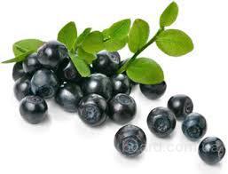 Черника, плоды