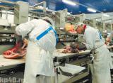 Раздельщик мяса и мясных изделий на мясокомбинат Работа в Польше