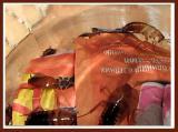 Продам туркменских тараканов (shelfodrella tartara)