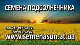 Продам семена подсолнечника , кукурузы Syngenta Monsanto Pioneer LG от 1950грн