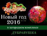Новый год 2016 в Дубравушка Club