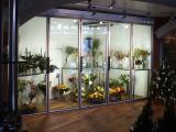 Холодильные камеры-витрины для хранения и демонстрации цветов