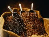 Кофе Свежеобжаренный в зёрнах