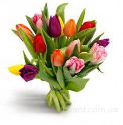 Букет тюльпанов для любимой