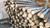 Столб деревянный подтоварник Сосна пиломатериалы