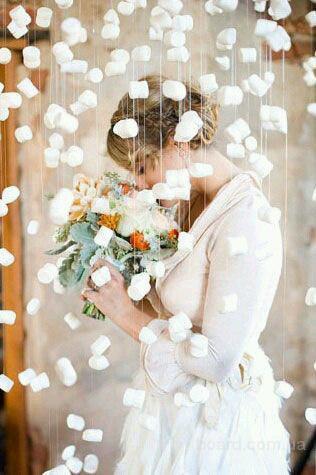 Зимняя свадьба в Киеве