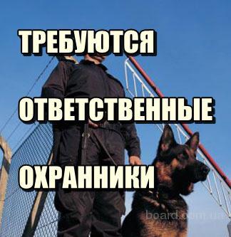 Требуются охранники умеющие работать с собаками