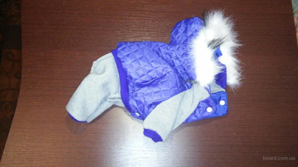 Костюм на синтипоне одежда для собак