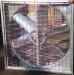 Осевые вытяжные вентиляторы для сельского хозяйства ВСХ -44500 М3/ч