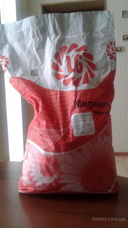 Продаём посевной материал подсолнечника Limagrain ЛГ Мегасан !