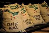 Кофе зеленый (необжаренный) в зернах Робуста