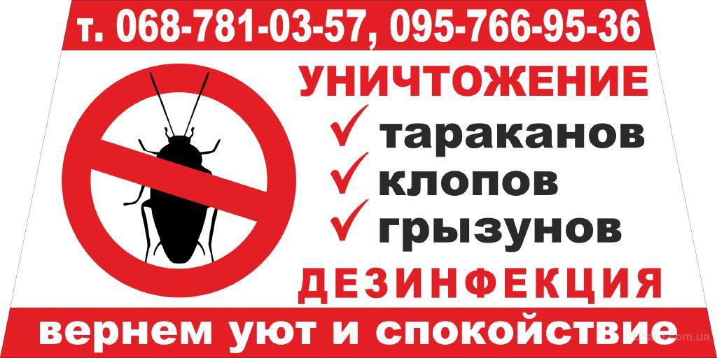 Уничтожаем тараканов, клопов, блох, крыс, мышей в Днепродзержинске