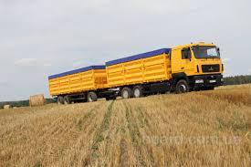 Продам пшеницу 3 кл. , фураж, кукурузу.