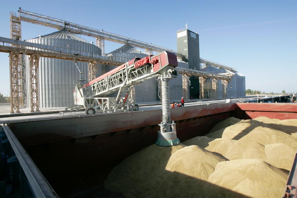 Продам кукурузу фуражную (FOB)