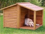 Изготовлю на заказ недорогую деревянную будку для собаки