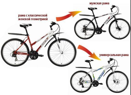 Профессиональный подбор велосипеда под вас