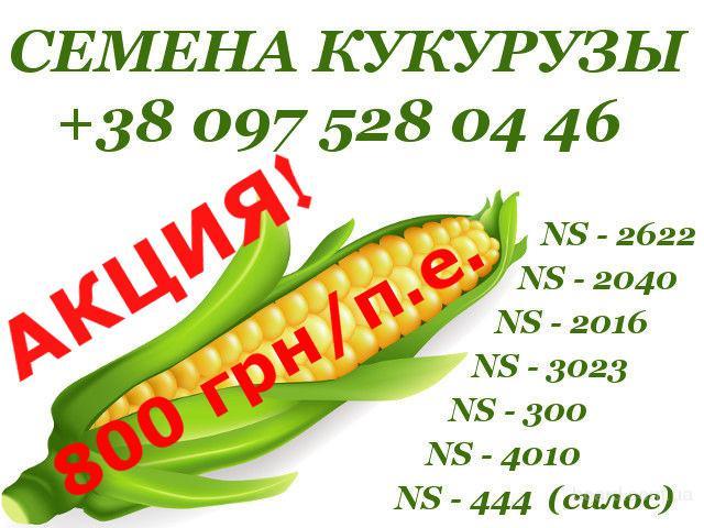 Семена кукурузы с документами. Высокое качество - низкие цены. Сербская селекция