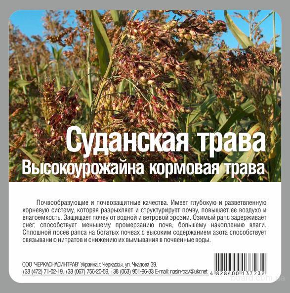 Продам семена Суданской травы