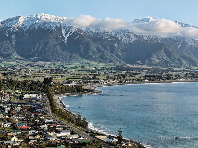 Все об эмиграции из России в Новую Зеландию