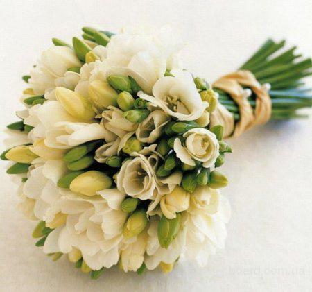 Студия флористического дизайна, Gloriosa  (предлагаю)