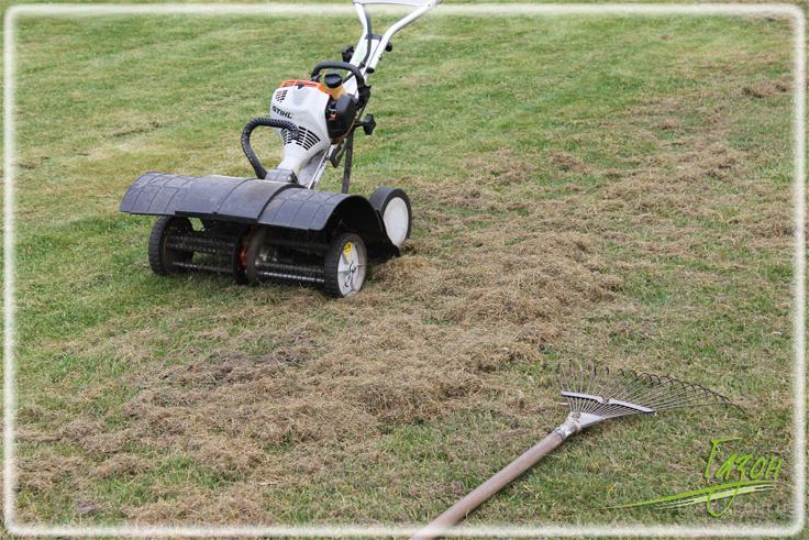 Вычесывание газона (скарификация газона)