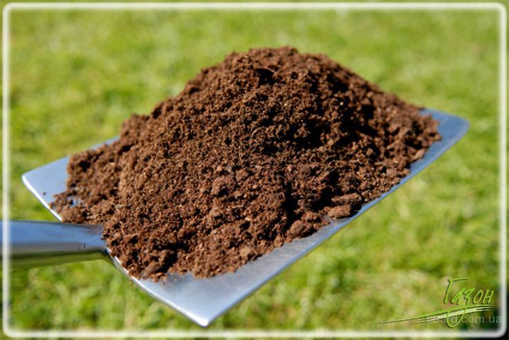 Мульчирование газона (пескование газона)
