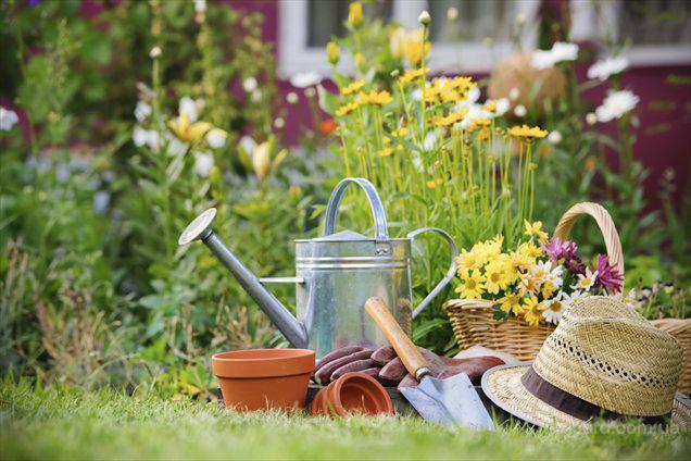 Курсы садовника. Садовник-дизайнер обучение.