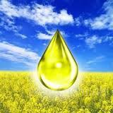 Соевое масло и техническое масло