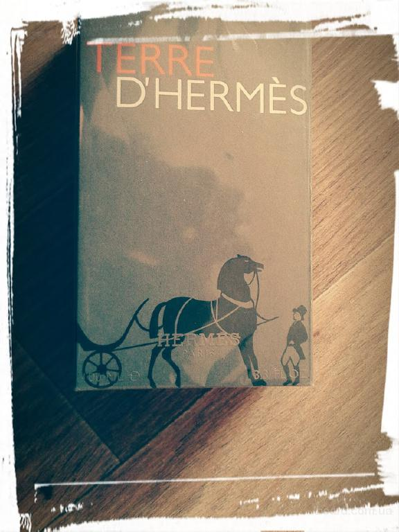 терре гермес Hermes Terre d'Hermes, Мужской 100млл