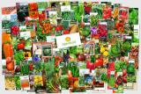 Интернет-магазин семян Ogorod