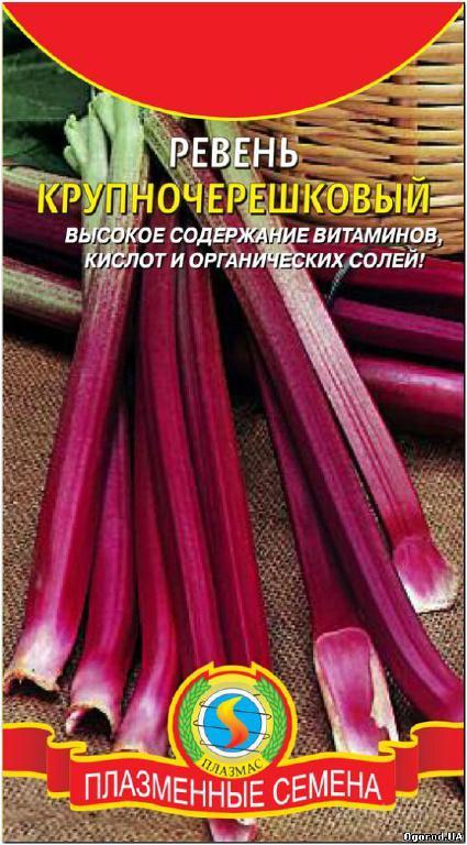 Семена ревеня «Крупночерешковий» - 1 грамм