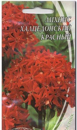Насіння ліхнісу «халцедонського» (червоного)