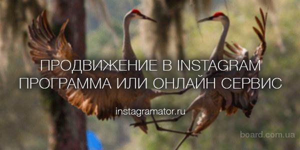 Обзор и сравнение программ для раскрутки инстаграма на портале Instagramator
