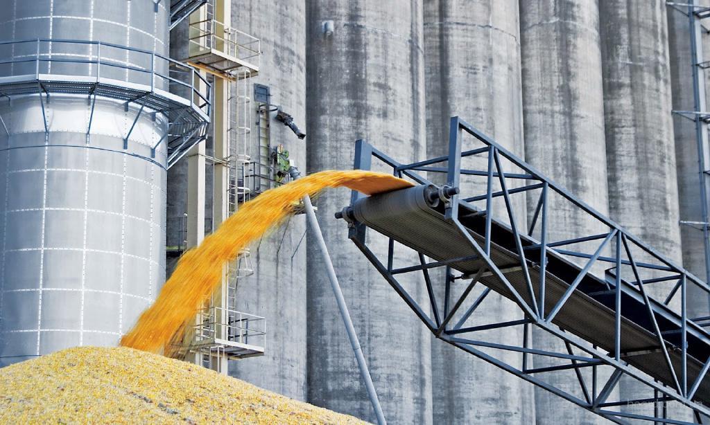 Предприятие  закупает дорого пшеницу