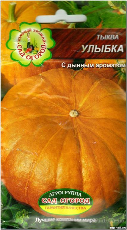 Семена тыквы «Улыбка» - 2 грамма