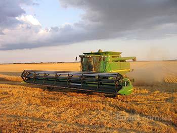 Уборка урожая зерновых Винница, услуги уборки зерна комбайном, аренда комбайнов на уборку