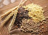 Купим пшеницу, рапс, подсолнечник