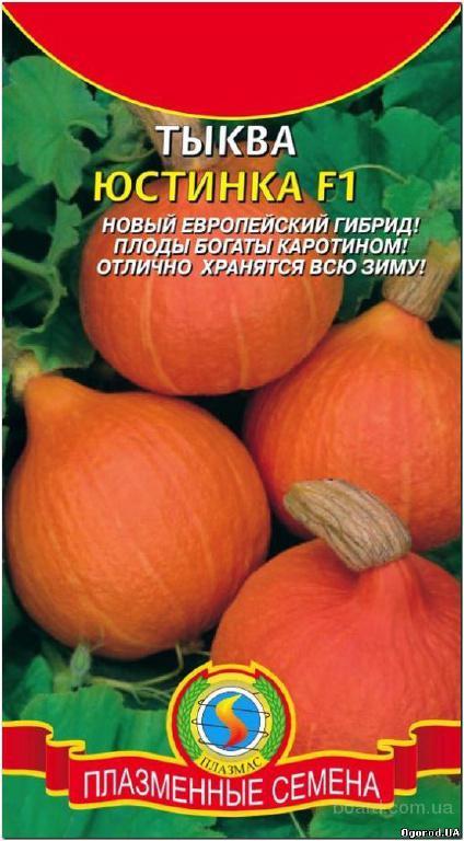 Семена тыквы «Юстинка» F1 - 1 грамм