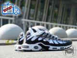Nike Air Max Tn+