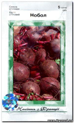 Семена свеклы «Нобол» / Nobol, ТМ Clause Tezier - 5 грамм