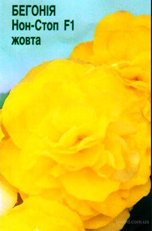 Насіння бегонії «Нон-Стоп» жовтої