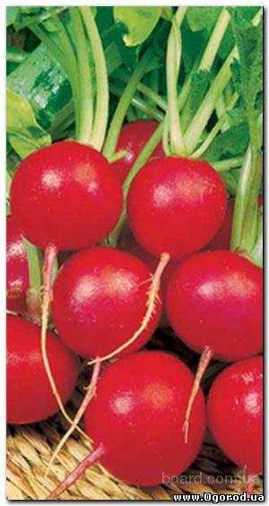 Семена редиса «Ранний красный»» - 3 грамма