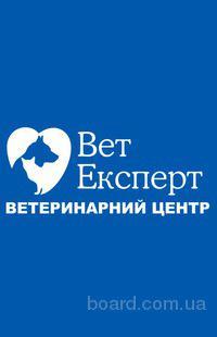 Вет Експерт, Ветеринарный центр