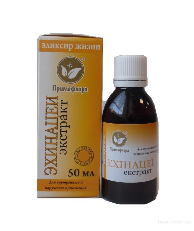 Экстракт эхинацеи – эффективное средство укрепления иммунитета