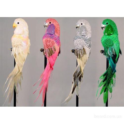 Декоративные птицы в Украине