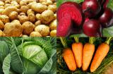 Куплю оптом картофель, лук, свеклу, морковь, капусту
