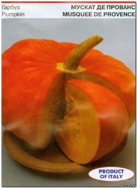 Семена тыквы «Мускат де Прованс» - 10 семян