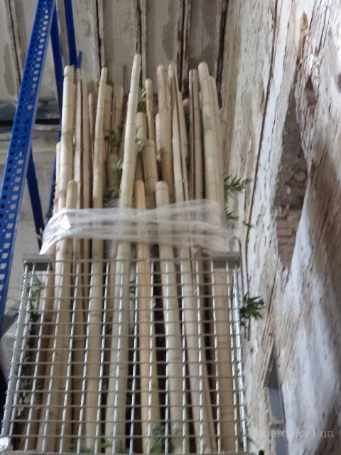 Продам бамбук  искусственный БУ