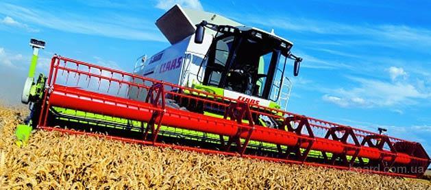 Услуги по уборке урожая зерновых Хмельницкий, аренда комбайнов на уборку зерна